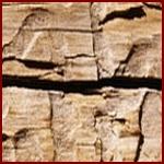 aangetast-hout-150k