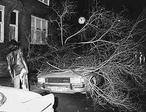 omgewaaide-boom-op-auto-1976